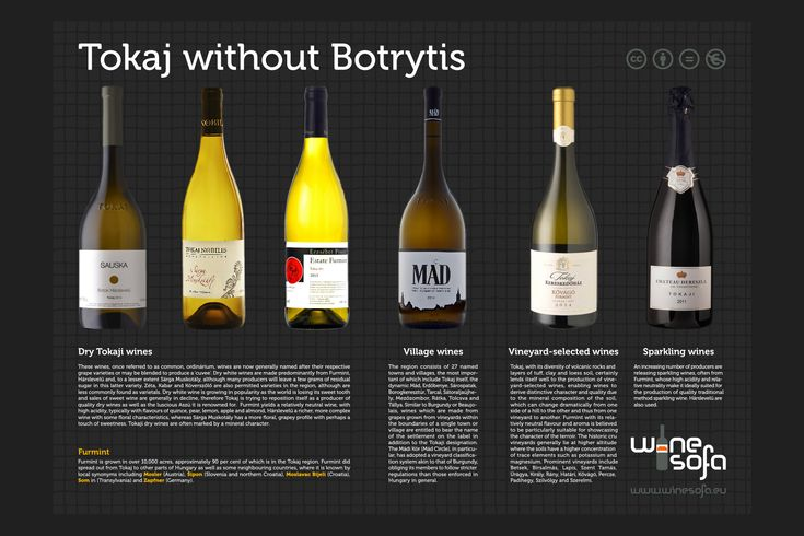 Guide to Tokaji wines without botrytis.