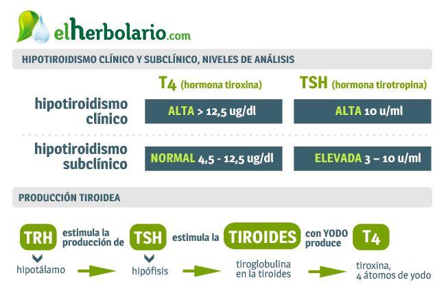 Hipotiroidismo e Hipotiroidismo subclinico