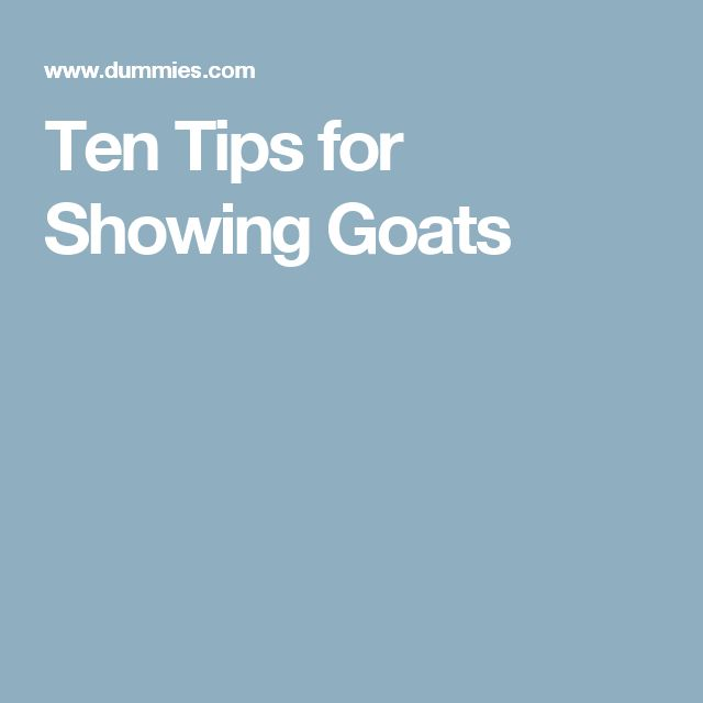 Ten Tips for Showing Goats