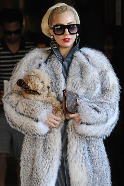 Lady Gaga wears Hermes fur coat while carrying her dog Lava