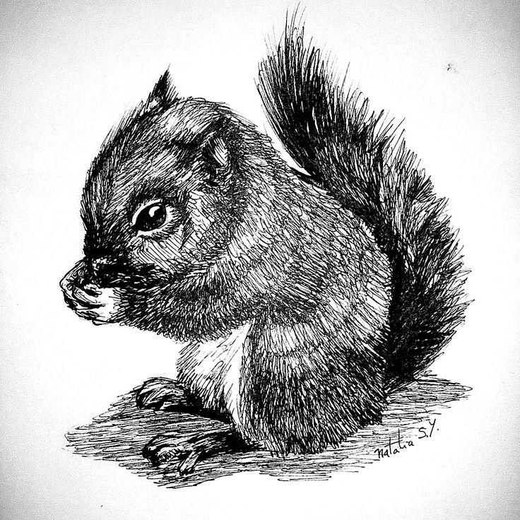 #squirrel #inkdrawing