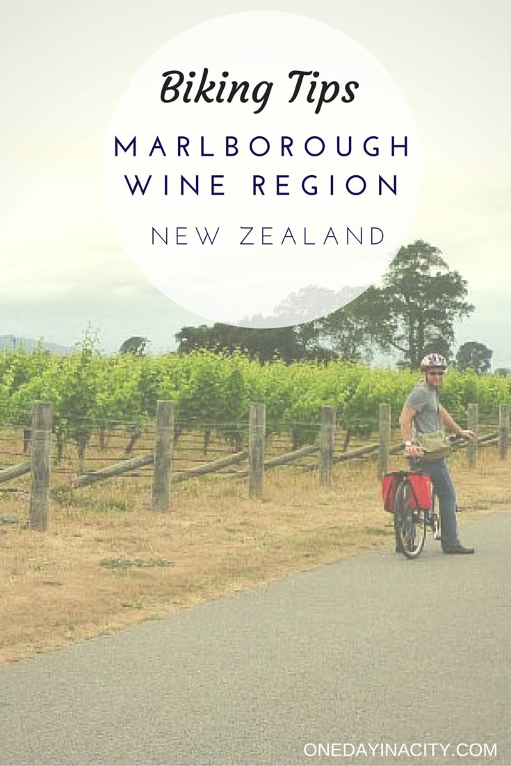 Spend a day biking around the Marlborough wine region in New Zealand. This travel guide includes some of the best wineries to visit plus logistics on renting a bike and carting around the wine!