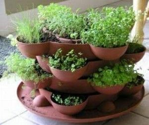 Indoor herb garden. Love this!Gardens Ideas, Indoor Herbs, Growing Herbs, Plants, Gardens Container, Planters, Small Spaces, Small Herbs Gardens,  Flowerpot