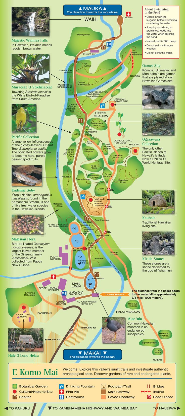 **2013WaimeaValleyMap-Go for a beautiful walk/hike up Waimea Valley up to the Waimea falls. Don't forget your camera!! It is absolutely GORGEOUS! Pay the $ and go see. Allow yourself 2 hours+ for your visit.It is a 3/4 mile walk on a paved trail to the falls, and if you are impaired at all you can pay $6.00 for a round trip shuttle to the falls. Once at the falls you can go for a swim if you want