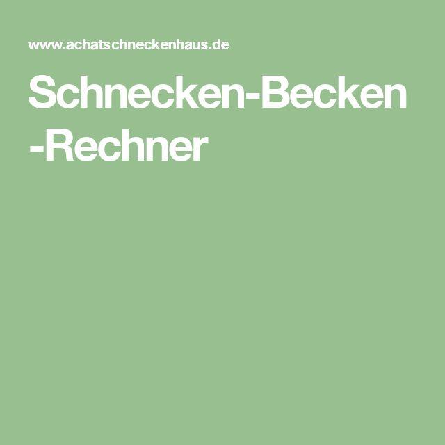 Schnecken-Becken-Rechner