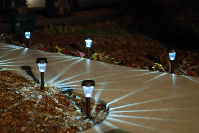 Illuminate and decorate your path or walkway with solar walkway lights.  There are many different styles and prices available. Check your local Walgreens in their Seasonal aisle for great deals on these!