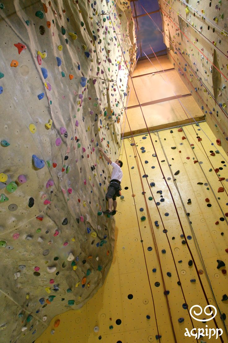 145 best Climbing Gym images on Pinterest | Bouldering, Climbing and ...