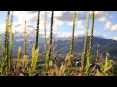 We love New Zealand!  www.holaaustralia.com