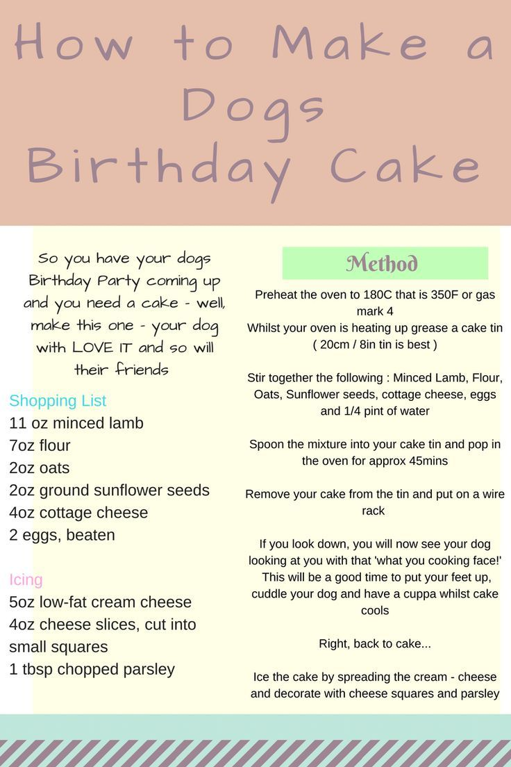 Best 25+ Dog Birthday Cakes Ideas On Pinterest  Doggie Birthday Cake,  Birthday Cakes For Dogs And Dog Birthday Cupcakes
