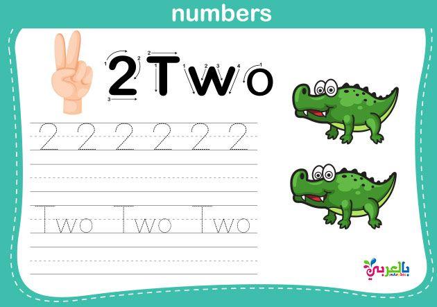 Number Worksheets For Kindergarten Number Printable For Kids بالعربي نتعلم Free Kindergarten Worksheets Kindergarten Worksheets Kindergarten Writing