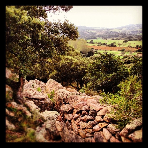 #sardinia #sardegna #autumn  @quintomoro- #webstagram