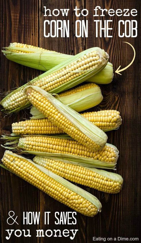 Stock up on fresh corn on the cob when it gets cheap. Then, did you know you can freeze it? How to Freeze Corn on the Cob so you can save more money and have fresh corn all year long.