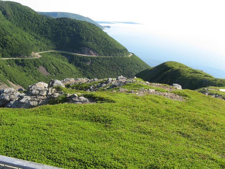 THE CABOT TRAIL  https://www.tripadvisor.ca/Attraction_Review-g154972-d186150-Reviews-Cabot_Trail-Cape_Breton_Island_Nova_Scotia.html