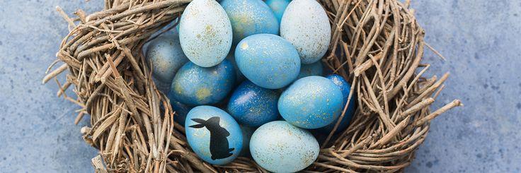 Pasen, de tijd van gezellig samen eieren zoeken, ontbijten of brunchen. Ook voor het diner vind je hier de leukste paasrecepten.