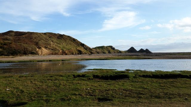 Three Clifs Bay, Walia