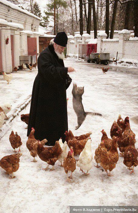 Patriarch Alexy II feeding chickens.
