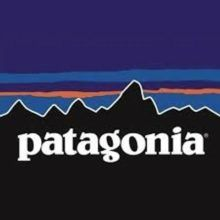 How Passion and Purpose Led the Patagonia Brand to New Heights -- Friday's Fearless Brand - Patagonia