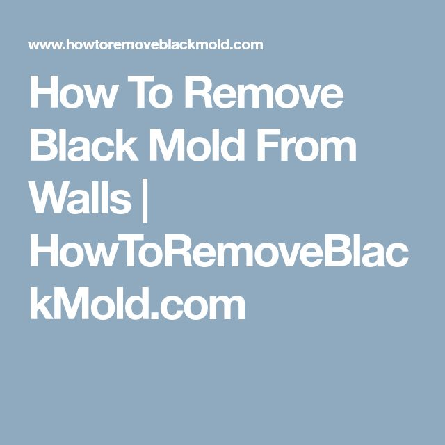 How To Remove Black Mold From Walls | HowToRemoveBlackMold.com
