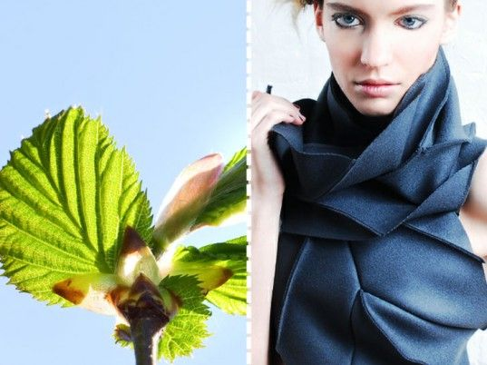 """Diana Eng based her """"Miura Ori"""" scarf on an origami """"leaf-fold"""" pattern invented by Koryo Miura, a Japanese space scientist who was in turn inspired by the unfurling mechanism of the hornbeam and beech leaves. #fashion #biomimicry #scarf"""