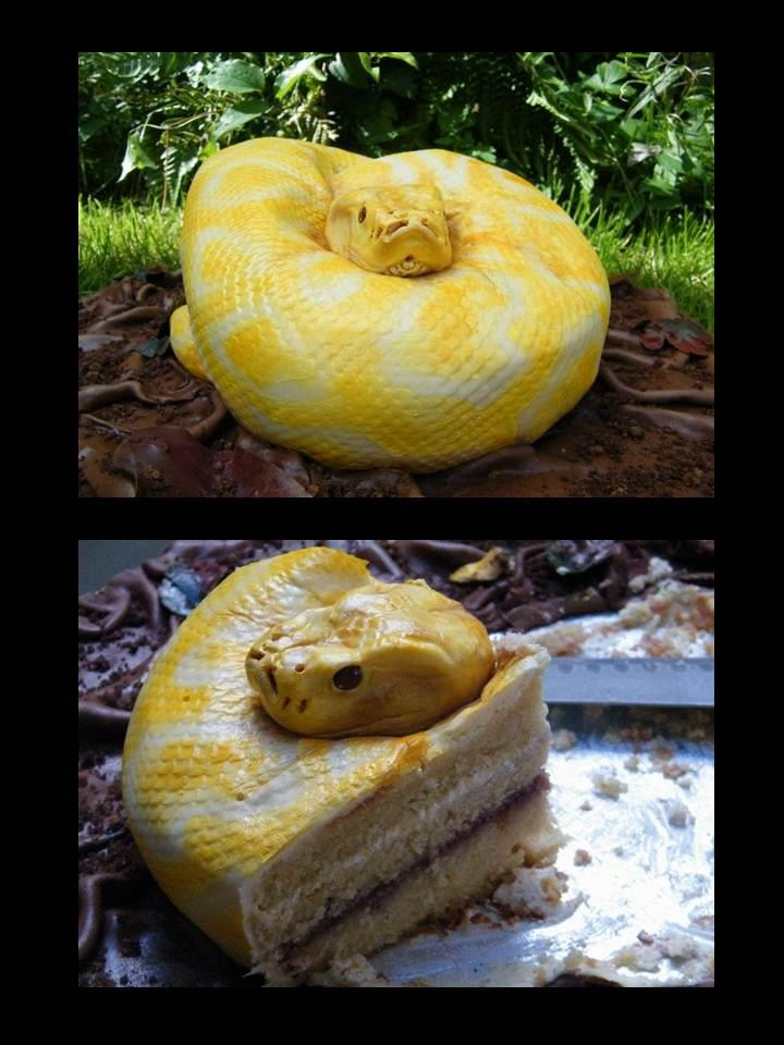Is it a snake...or a cake? Pretty inventive, slightly scary, and an all around creative cake.