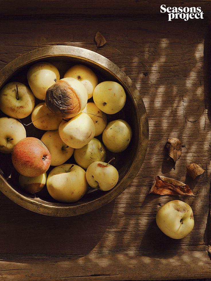 Seasons of life №6 / November-December issue #seasonsproject #seasons #mood #decor #apple