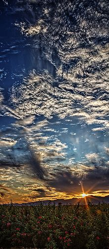Vertical Panoramic Sunset , west of Tucson arizona. | Pin from @GuessQuest collection