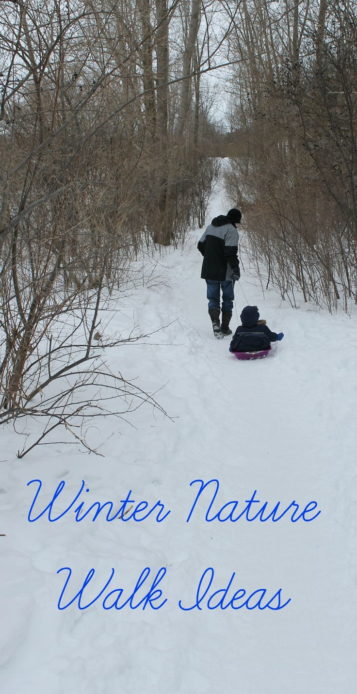 Still snowy?  Us too - but don't worry there is lots of fun snow activities!  Here are some awesome winter nature walk ideas to tie you over until Spring!
