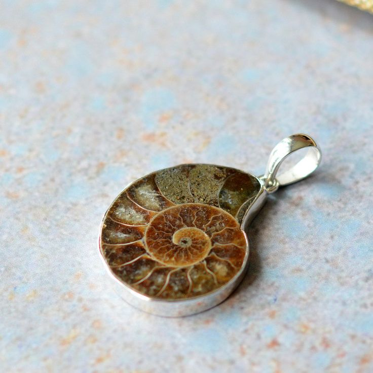 69 best pendants semi precious gemstone pendants images on ammonite pendant sterling silver handmade large bail large ammonite pendant40x30mm mozeypictures Gallery