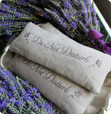Lavender Eye Pillows.  The tutorial is here:  http://www.centsationalgirl.com/2010/06/diy-lavender-eye-pillows-and-a-giveaway/