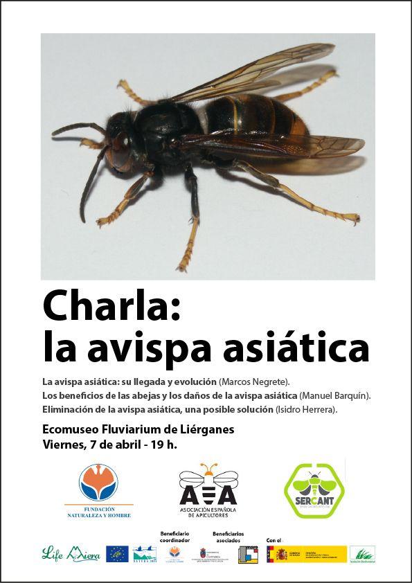 Charla sobre la avispa asiática en el Fluviarium de Liérganes   #Cantabria http://laoropendolasostenible.blogspot.com/2017/04/charla-sobre-la-avispa-asiatica-en-el.html
