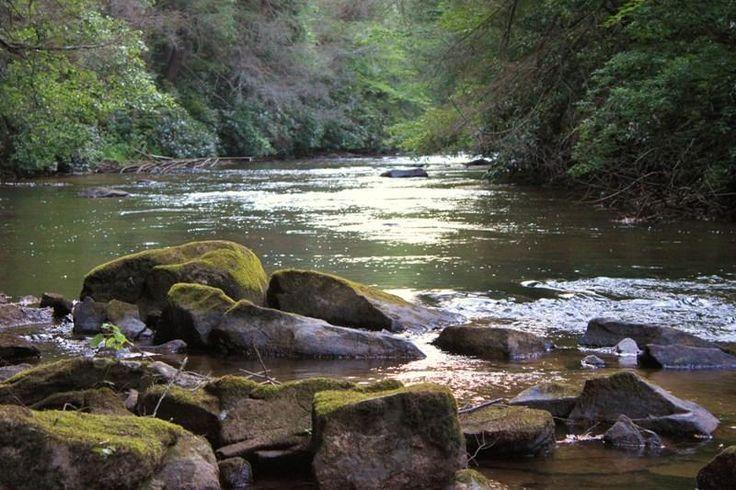 Fightingtown Creek, #BlueRidgeGA.