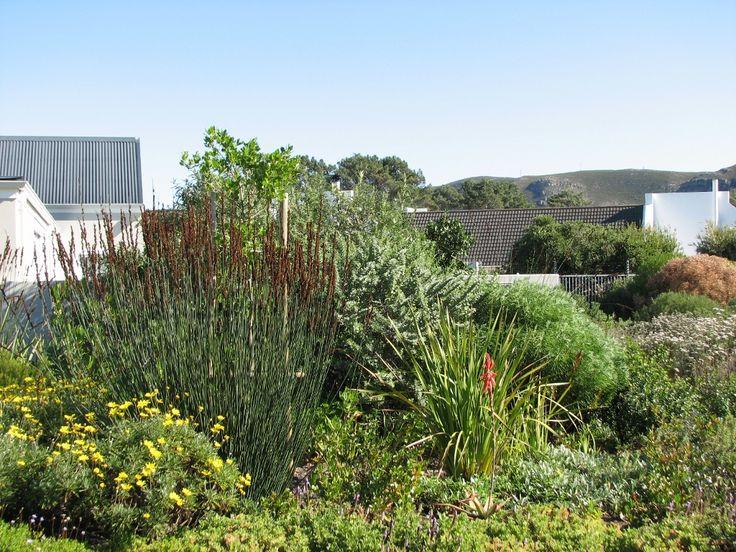 Fynbos Gardens Hermanus: House Eustace - Prestwick Village - Hermanus.