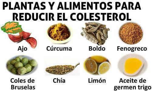 Remedios naturales y plantas para el colesterol con plantas medicinales y alimentos