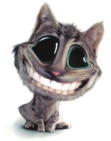 Big teeth smiles | Bite Me | Pinterest | Teeth, Smile and ...