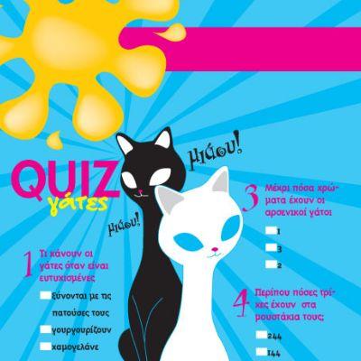 Κουίζ με Γάτες