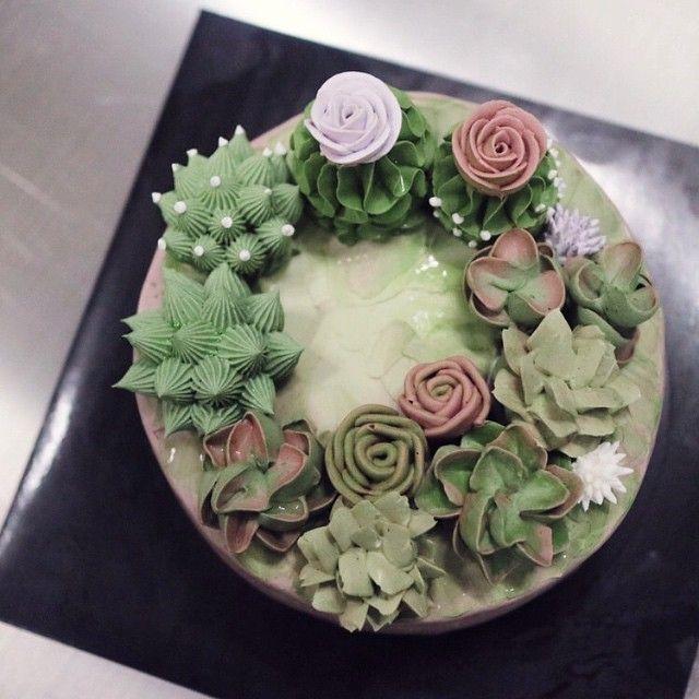 _  다육이 #succulents#cactus#buttercake #buttercream #선인장케익…