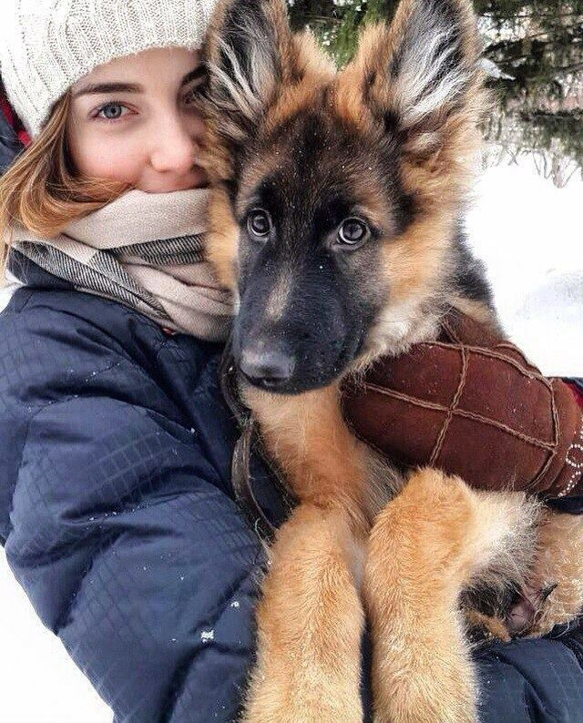 A girl and her GSD puppy.