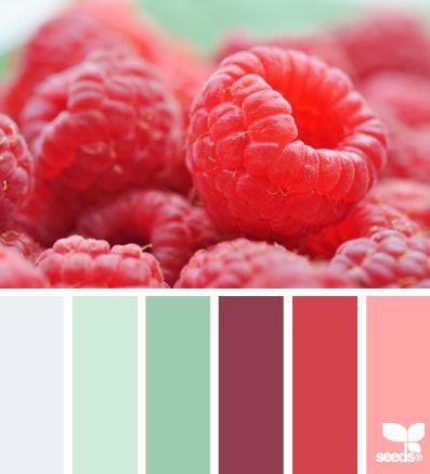 raspberry hues