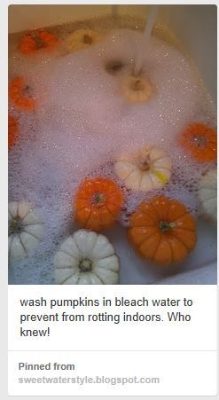 white wash pumpkins