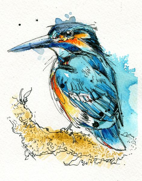 Regal Kingfisher Art Print by Abby Diamond | Society6