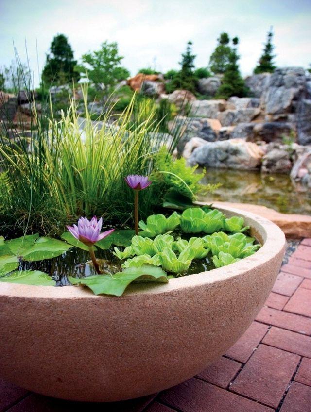 Balkongestaltung Mit Mini Teich Welche Pflanzen Passen Dazu