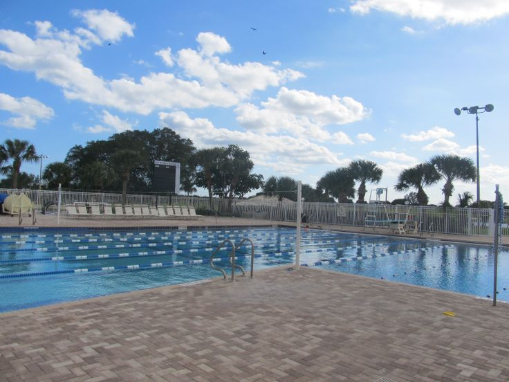 17 best images about life in juno beach on pinterest gardens parks and palm trees - Palm beach swimming pool ...
