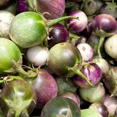 Heirloom eggplant varieties - Find out which heirloom eggplant varieties you should plant in your garden and try a recipe for stewed eggplant. From MOTHER EARTH NEWS magazine.