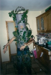 How To Make A Homemade Tree Fancy Dress Costume