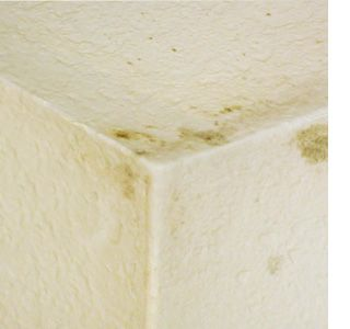 how to clean mould off bathroom sealant
