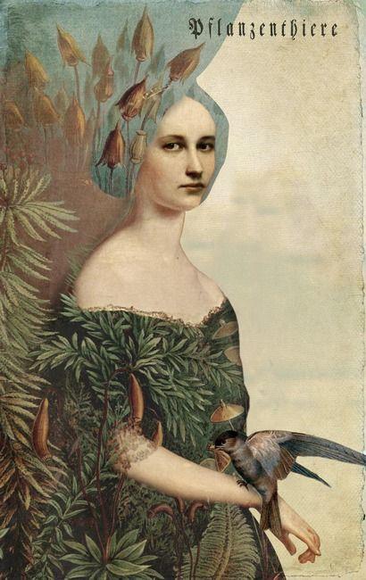 Catrin Weltz-Stein: girl, bird, feathers, surreal, graphic, design, illustration, ART, creative imagination.