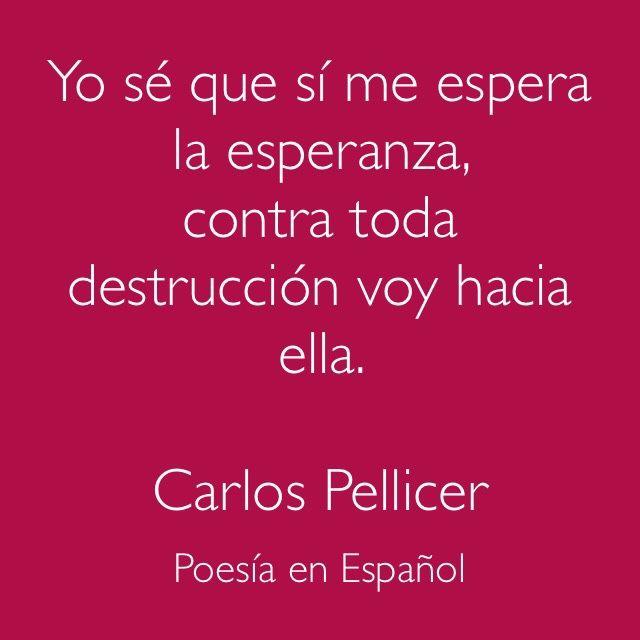 Carlos Pellicer.