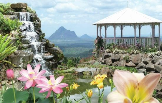 Maleny Botanic Gardens - we've been here