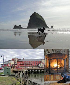 Oregon Beach Hotels Dog Friendly
