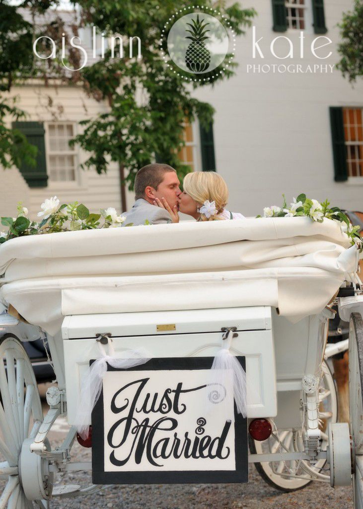 White Horse And Carriage With The Classic 'Just Married' Sign On The Back.